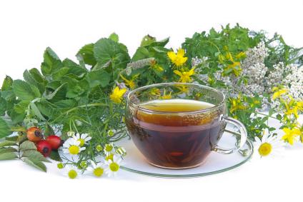 Tee Kräuter - tea herbal 01
